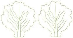 Lettuce Leaves embroidery design