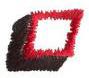 Club 2 Period embroidery design