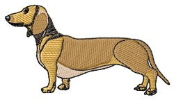 Smooth-Haired Dachshund embroidery design