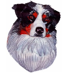 Bronco Aussie embroidery design