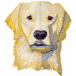 Golden Lab embroidery design