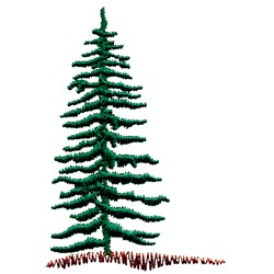Evergreen Tree embroidery design