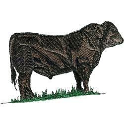 Black Angus Steer embroidery design