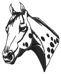 Appaloosa Head embroidery design