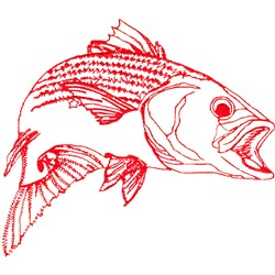 Striped Bass Redwork embroidery design
