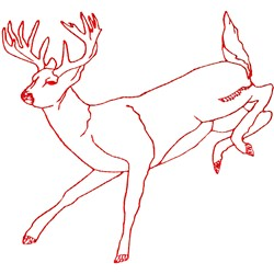 White Tail  Deer embroidery design