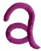 Squiggly a embroidery design
