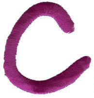 Squiggly C embroidery design