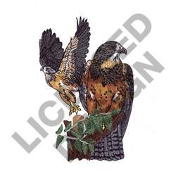 HAWKS embroidery design