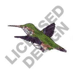FEMALE RUFUS HUMMINGBIRD embroidery design