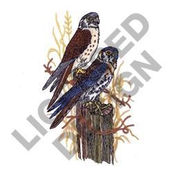 KESTRAL HAWKS embroidery design