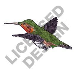 MALE RUFUS HUMMINGBIRD embroidery design