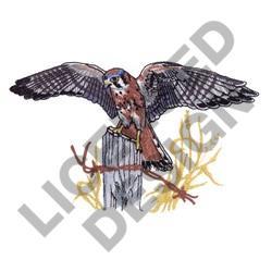 KESTRAL HAWK embroidery design