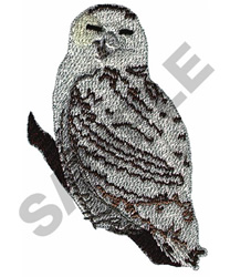 SPOTTED OWL embroidery design