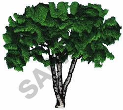 CANOE BIRCH TREE embroidery design