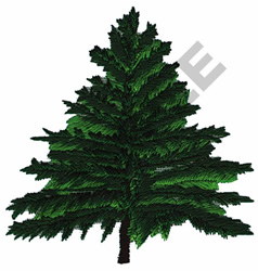 NORWAY PINE TREE embroidery design