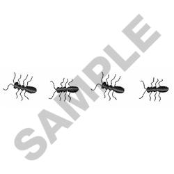 ANTS embroidery design