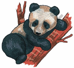PANDA IN A TREE embroidery design