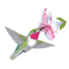 HUMMING BIRD embroidery design