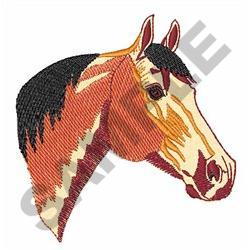 BUCKSKIN QUARTER HORSE embroidery design