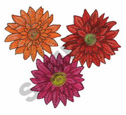 GERBER DAISIES embroidery design