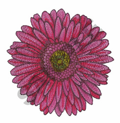 GERBER DAISY BLOOM embroidery design