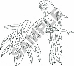 LARGE MACAW OUTLINE embroidery design