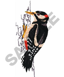 GREAT SPOTTED WOODPECKER embroidery design