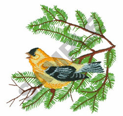 AMERICAN GOLDFINCH embroidery design