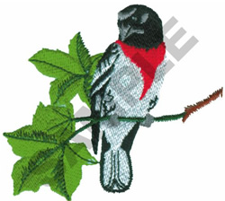 ROSE-BREASTED GROSBEAK embroidery design