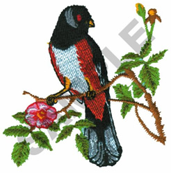RUFOUS SIDED TOWHEE embroidery design
