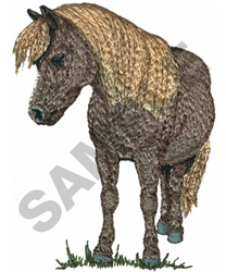 SHETLAND PONY embroidery design