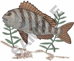 SHEEPSHEAD FISH embroidery design
