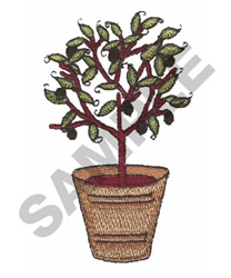 POTTED OLIVE TREE embroidery design