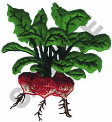 RADISHES embroidery design