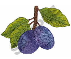 PLUMS embroidery design