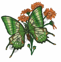 KAISER BUTTERFLY embroidery design