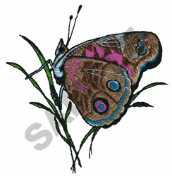 AMPTLADY BUTTERFLY embroidery design