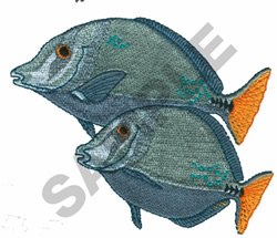 SURGEON FISH embroidery design