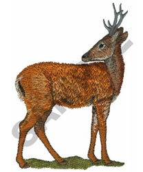 PAMPAS DEER embroidery design