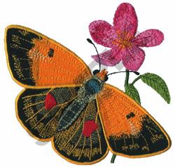 PIERIADE embroidery design