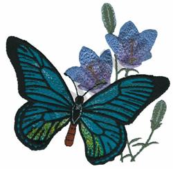 PAPILIO ZALMOXIS embroidery design