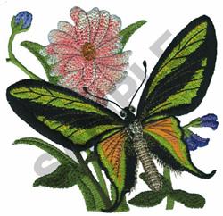 ORINTHOPETRA PARADISE embroidery design
