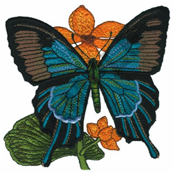 PAPILIO ULYSSES embroidery design
