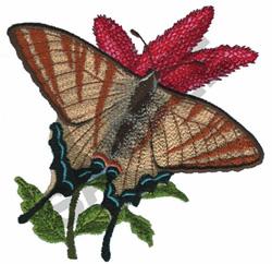 IPHICLIDIES PODALIRIUS embroidery design