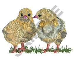 CHICKS embroidery design