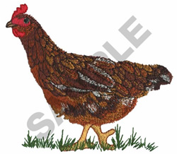 HEN embroidery design