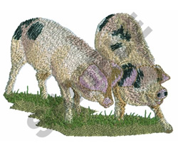 PIGS embroidery design