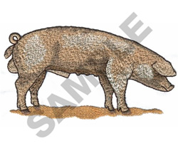 BRITISH LANDRACE PIG embroidery design