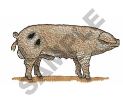 GLOUCHESTER PIG embroidery design